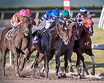 HALLANDALE BEACH, FL - MAR 3:Classic Rock #4 trained Kathy Ritvo with Luis Saez in the irons squeezes between two contenders along the final turn on the way to winning the $100,000 Gulfstream Park Sprint (G3) at Gulfstream Park on March 3, 2018 in Hallandale Beach, Florida. (Photo by Bob Aaron/Eclipse Sportswire/Getty Images)