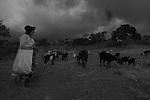 Trabalhadores rurais da regi&atilde;o do Agreste de Pernambuco. Comunidade S&iacute;tio Sobrado na Divisa com a Para&iacute;ba.<br /> <br /> A Comunidade S&iacute;tio Sobrado &eacute; composta por 120 fam&iacute;lias de agricultores rurais. Localiza-se no munic&iacute;pio de Jata&uacute;ba, no agreste pernambucano, quase divisa com a Para&iacute;ba. A vila (Vila Jacu) mais pr&oacute;xima do povoado fica a cerca de dois quil&ocirc;metros. Os cultivos mais comuns s&atilde;o feij&otilde;es/favas, milho e cria&ccedil;&atilde;o de animais. Outra atividade de grande import&acirc;ncia para a economia local &eacute; a Renascen&ccedil;a, renda feita pelas mulheres com linha e agulha de costura. H&aacute; cerca de 4 anos os moradores da regi&atilde;o enfrentam a falta de chuvas, mas abastecem as casas e regam as planta&ccedil;&otilde;es com &aacute;gua das cisternas que come&ccedil;aram a ser constru&iacute;das pela ASA (Articula&ccedil;&atilde;o do Semi&aacute;rido) em meados dos anos 90. O projeto de constru&ccedil;&atilde;o de cisternas tomou mais for&ccedil;a alguns anos depois, no governo Lula, e hoje contempla todo o semi&aacute;rido brasileiro, composto por nove estados brasileiros.
