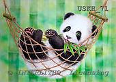 Kayomi, CUTE ANIMALS, paintings, HammockPandaGreen_M, USKH71,#AC# illustrations, pinturas ,everyday