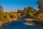 Fall along the Kern River at Hart Memorial Park, Bakersfield, California.