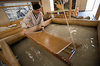 Pan Asia Paper Museum. Han-ji (traditional Korean paper from mulberry bark) making demonstration.