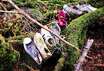The shoes of what appear to be a woman, man and two children lie at the base of a tree in Aokigahara Jukai, better known as the Mt. Fuji suicide forest, which is located at the base of Japan's famed mountain west of Tokyo, Japan. It is not unusual for those contemplating suicide to lay out a sheet or item of clothing to lie on, but removing their shoes before they do. PHOTOGRAPHER: ROB GILHOOLY