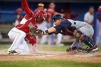 Batavia Muckdogs designated hitter Jhonny Santos (32) is tagged out at home by catcher Dan Rizzie (33) during a game against the Brooklyn Cyclones on July 5, 2016 at Dwyer Stadium in Batavia, New York.  Brooklyn defeated Batavia 5-1.  (Mike Janes/Four Seam Images)