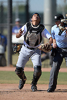Chicago White Sox catcher Sammy Ayala (17) during an Instructional League game against the Los Angeles Dodgers on October 12, 2013 at Camelback Ranch Complex in Glendale, Arizona.  (Mike Janes/Four Seam Images)