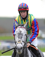 Lickpenny Larry ridden by Robert Dunne and trained by Tom Gretton during Horse Racing at Plumpton Racecourse on 4th November 2019