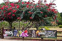 Porto Seguro_BA, Brasil...Reserva Particular do Patrimonio Natural (RPPN)...Private Reserve of Natural Heritage (RPPN)...Foto: JOAO MARCOS ROSA / NITRO