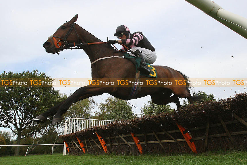 All That Remains ridden by Danny Cook in jumping action during the Autumn Handicap Hurdle - National Hunt Horse Racing at Fakenham Racecourse, Norfolk - 25/10/13 - MANDATORY CREDIT: Gavin Ellis/TGSPHOTO - Self billing applies where appropriate - 0845 094 6026 - contact@tgsphoto.co.uk - NO UNPAID USE