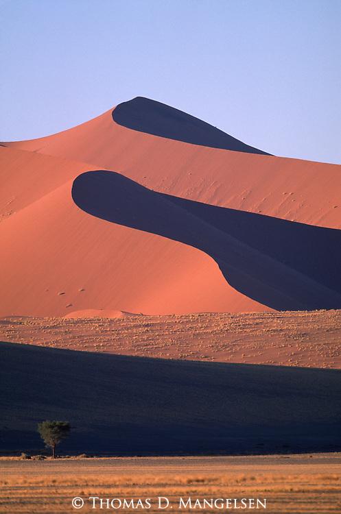 Towering sand dunes of the Little Kulala region in Sossusvlei, Namibia.