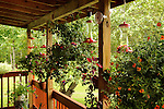 Abby's Garden.View of humming bird feeders on porch.