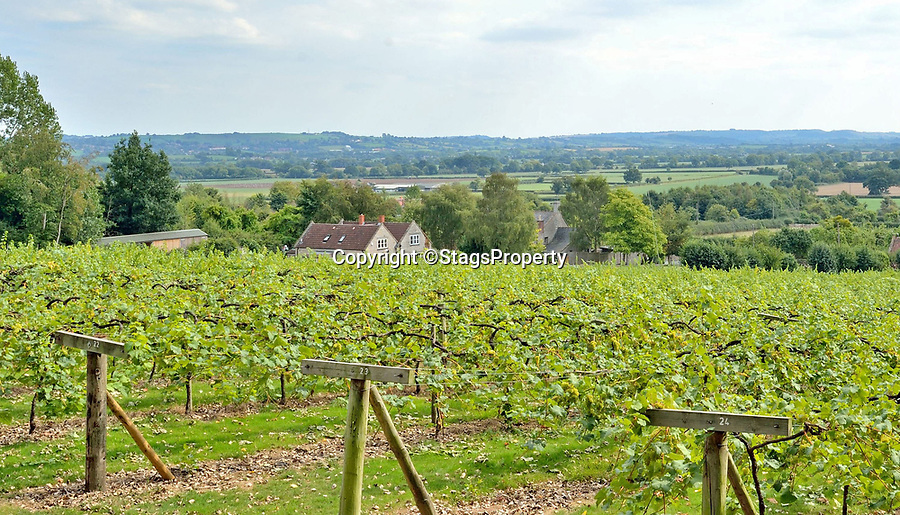 BNPS.co.uk (01202 558833)<br /> Pic: StagsProperty/BNPS<br /> <br /> Wine shop comes with the property.<br /> <br /> Chateauneuf du Pape! ! - Beautiful Somerset property comes with its own 6 acre vinyard.<br /> <br /> A stylish country home has been dubbed the perfect house for any wine lover - as it comes with its own vineyard and bottling plant within its grounds.<br /> <br /> Wraxall Vineyard in Somerset is up for sale for £1.25m and includes a tasting room, shop and and its own wine cellar.<br /> <br /> The spot is used by the current owners to run tasting tours around the grounds and space is available to expand the vineyard by another five acres should demand outstrip supply.<br /> <br /> The picturesque vinyard produces over 17 tons of grapes in a good year - enough for 5300 bottles of lovely sparkling wine.
