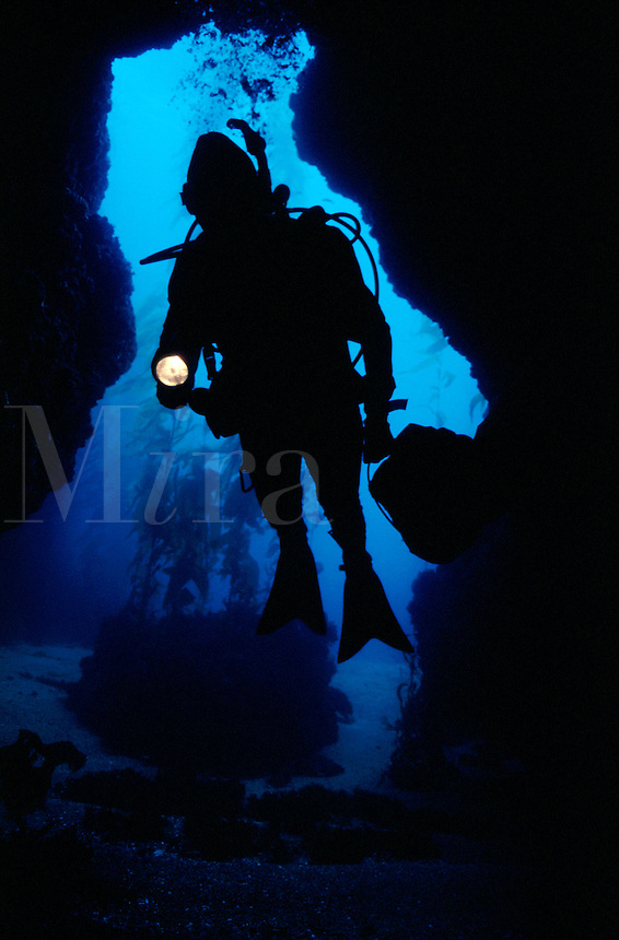 Scuba diver entering underwater cave with flashlight. Anacapa Island, CA