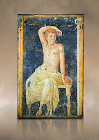 Detail of the Roman fresco wall painting of a young man resting from the  triclinium,  a formal dining room, of the Villa Arianna (Adriana), Stabiae (Stabia) near Pompeii , inv 9093, Naples National Archaeological Museum,  art background