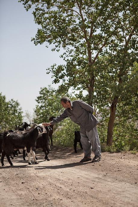 Iranian Shepherd in Kharanaq