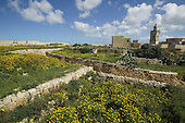 Springtime flowers at Citadel in Victoria (also known as Rabat) on the maltese Island of Gozo with Cathedral in the background