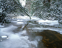 Winter snow on the Doe River, Roan Mountain State Park