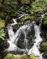 Rushing stream in the Black Forest, Germany