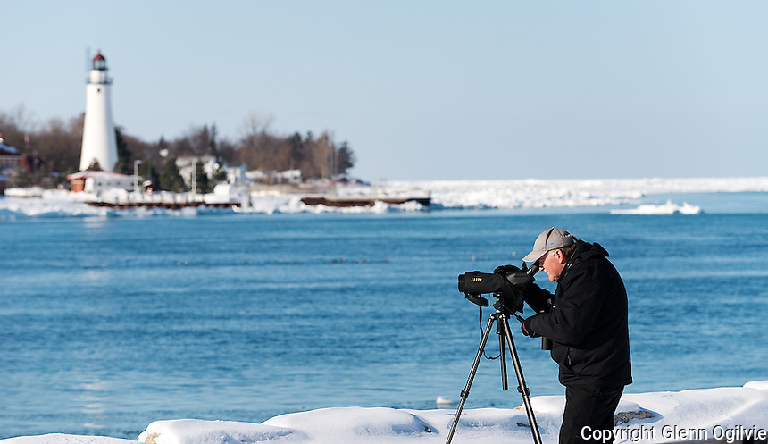 Brian Morin, of Cornwall Ontario, keeps an eye on the ducks on the open waters of the St. Clair River north of the Blue Water Bridge. He said he is visiting family in London Ontario and made a road trip to the Pinery Provincial Park and to Point Edward to find ducks and shoot pictures of them.