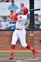 Johnson City Cardinals left fielder Walker Robbins (25) swings at a pitch during a game against the Bristol Pirates at TVA Credit Union Ballpark on June 23, 2017 in Johnson City, Tennessee. The Pirates defeated the Cardinals 4-3. (Tony Farlow/Four Seam Images)
