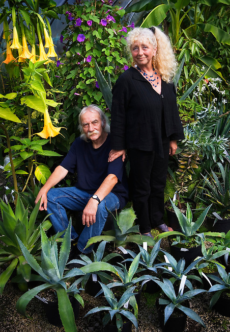 Clive and Julie, owners of the Hardy Exotics Nursery in Cornwall.<br />