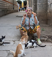 Feeding and connecting with friends, La Habana Vieja