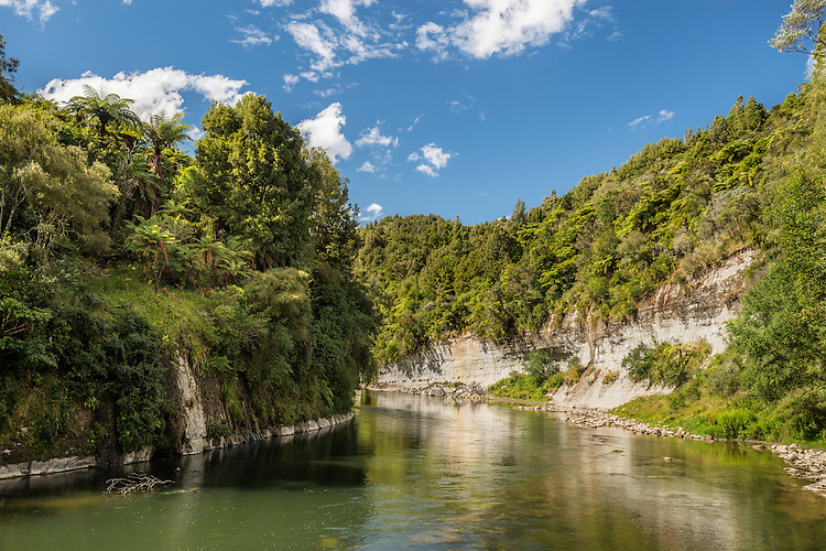 The Whanganui River viewed from near Taumarunui.  King Country, New Zealand - canvas, fine art print