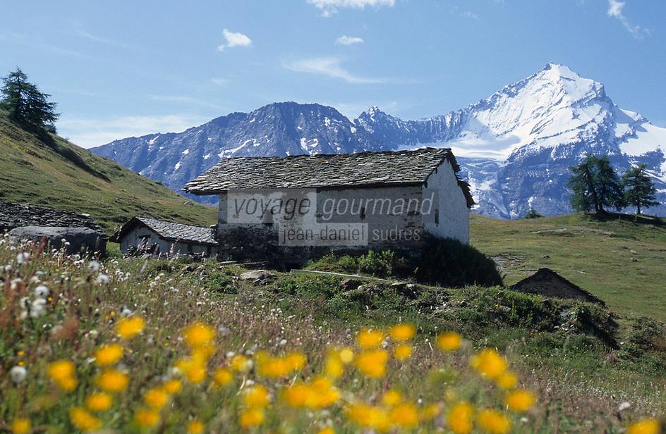 Europe/Italie/Val d'Aoste: Paturages du pilat , chalet d'altitude    et en fond la Grivola  (3968m)