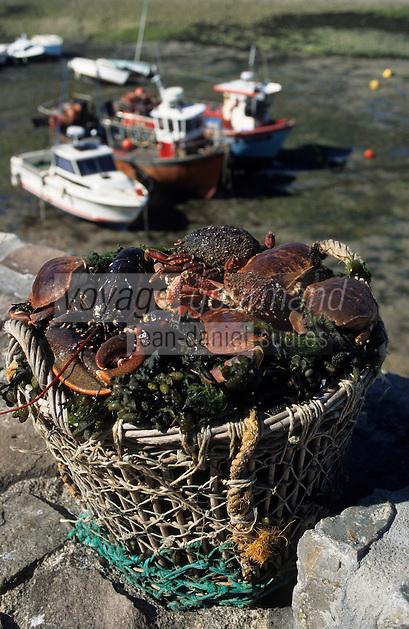 Europe/France/Normandie/Basse-Normandie/50/Manche/Cap de la Hague/Goury: Retour de pêche - Panier de crustacés sur le port
