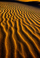 769550137a low-angled sunset light emphasises tthe three-dimensional ripple effect in the sand dunes of oregon dunes national recreation area in northwestern oregon