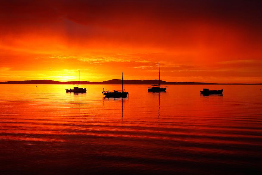 Yachts at dawn South Australia