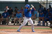 Chicago Cubs catcher Michael Cruz (8) at bat during a Minor League Spring Training game against the Oakland Athletics at Sloan Park on March 13, 2018 in Mesa, Arizona. (Zachary Lucy/Four Seam Images)