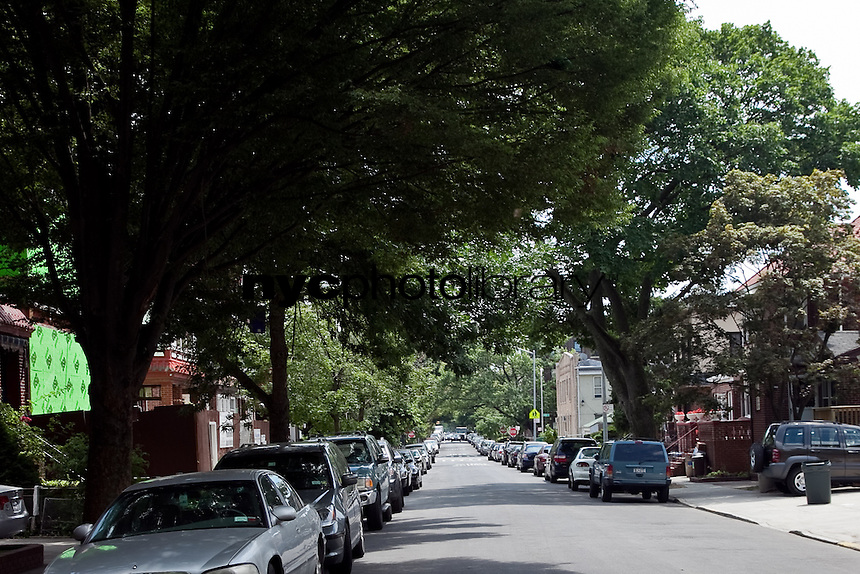 Midwood Apartments For Sale
