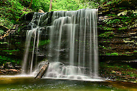 Harrison Wright Falls in Ricketts Glen State Park in northeastern Pennsylvania.