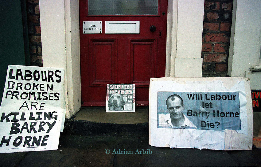 Protesters set up placards putside  the York Labour party HQ.     A pre-election promise by  the Labour party was supposed  to pursue a  Royal Commission on  their election  to Government.  This pledge  gained them a £1 million  donation from Animal welfare groups.  Barry Horne is on hunger strike for this same Royal Commission to be  instigated.  New Labour are refusing to meet his demands.