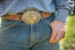 Rodeo buckles. Calf branding and marking with the Busi family at their ranch near Jackson, Calif. (Stony Creek corral)