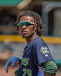 2 August 2016: Vermont Lake Monsters infielder JaVon Shelby stands in the dugout during a game against the Connecticut Tigers at Centennial Field in Burlington, Vermont. The Tigers defeated the Lake Monsters 7-1 in NY Penn League play.  Mandatory Credit: Ed Wolfstein Photo *** RAW (NEF) Image File Available ***