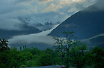 Snow capped mountain,low clouds with orchard in the foreground,early morning, Imst district, Tyrol,Tirol, Austria.