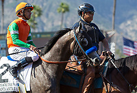 ARCADIA, CA APRIL 8: #2 Reach the World ridden by Mike Smith in the post parade before the Santa Anita Derby (Grade l) on April 8, 2017 at Santa Anita Park in Arcadia, CA. (Photo by Casey Phillips/Eclipse Sportswire/Getty Images)