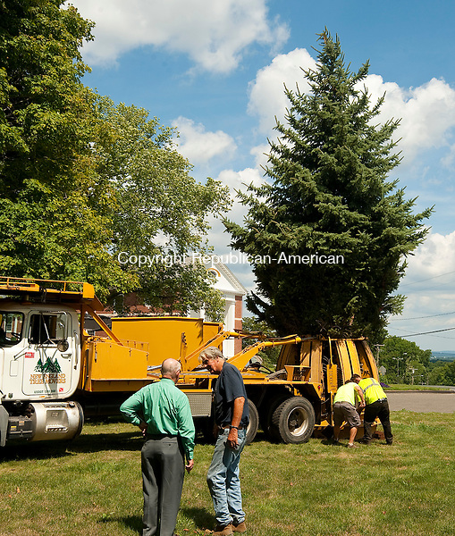 MIDDLEBURY,  CT--- -080516JS05- MIddlebury First Selectman Ed. St. John, left, talks with Peter Vileisis, a life-long resident of MIddlebury, as  workers from New England Tree Mover plant a new tree on the Middlebury Green on Friday. The tree will be used as the  town's new Christmas tree. Vileisis donated the cost of the tree and all moving expenses.5<br />  Jim Shannon Republican American