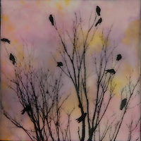 Flock of birds in branches silhouette against sunset encaustic photography SOLD