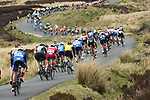 The peloton on the winding exposed roads during Stage 2 of the Tour de Yorkshire 2017 running 122.5km from Tadcaster to Harrogate, England. 29th April 2017. <br /> Picture: ASO/A.Broadway | Cyclefile<br /> <br /> <br /> All photos usage must carry mandatory copyright credit (&copy; Cyclefile | ASO/A.Broadway)
