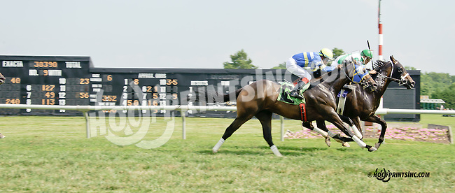 Sky Above winning at Delaware Park on 7/26/14