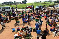 MALAWI, Thyolo, Makandi tea plantation and tomato market / Makandi Tee Plantage, Markttag, Farmer aus Dorf Samuti verkaufen Tomaten