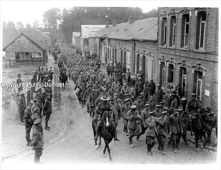 At the front<br /> Description<br /> <br /> The Canadians day's bag of German prisoners on the Somme