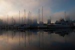 Reflections of masts through the mist. Stanly park, English bay.Vancouver,British Colombia, Canada