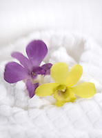 White Spa Towel with Orchids&amp;#xA;&amp;#xA;<br />