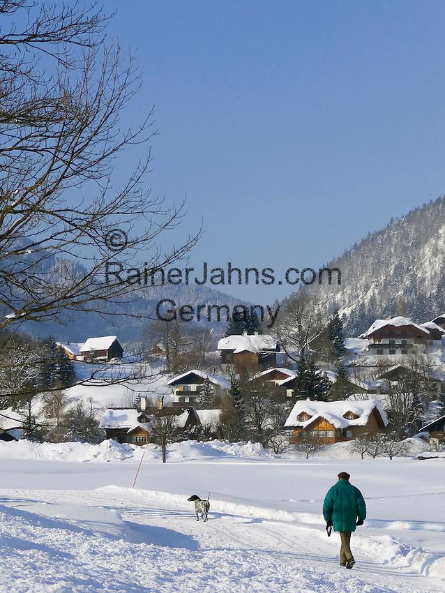Austria, Styria, Styrian Salzkammergut, Altausseerland, Altaussee at Altausseer Lake: walk with dog through winter scenery