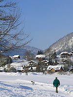 Austria, Styria, Styrian Salzkammergut, Altausseerland, Altaussee at Altausseer Lake: walk with dog through winter scenery