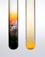 REACTION: H2SO4 W/SODIUM BROMIDE &amp; SODIUM IODIDE (2 of 2)<br /> Sulfuric Acid Oxidizes NaBr &amp; Nal<br /> Sulfuric acid oxidizes NaBr &amp; NaI to form Bromine and Iodine which quickly recrystallizes on the side of the test tube.
