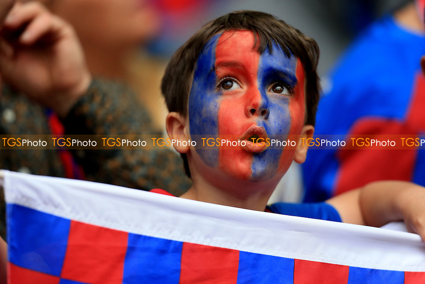 a young Crystal Palace fan during Crystal Palace vs Manchester United, Emirates FA Cup Final Football at Wembley Stadium on 21st May 2016