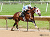 Hello Prince winning at Delaware Park racetrack on 6/4/14